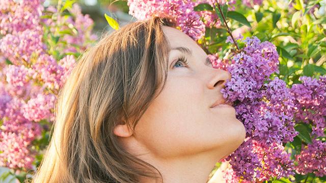 An einer Blume riechen