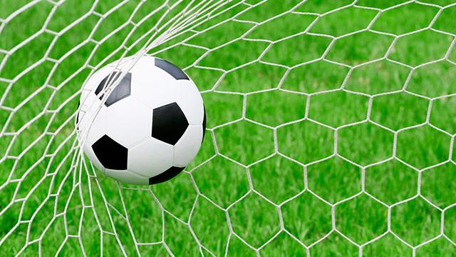 Tor: Der Ball ist am Ziel angelangt