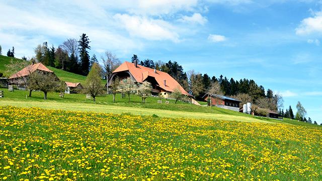 Bauernhof im Emmental