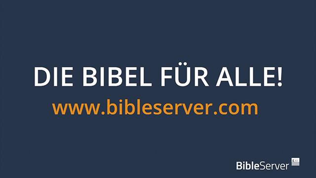 Jetzt mit Bibellesen starten
