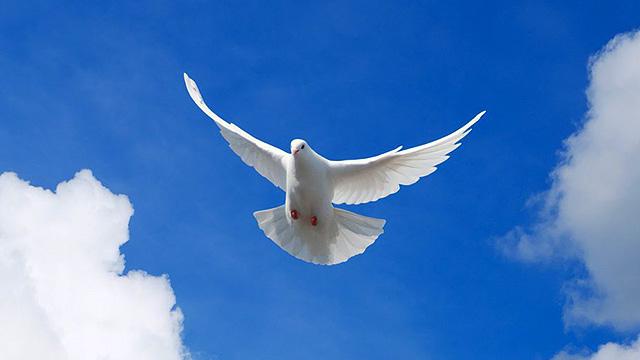 Heiliger Geist in Form einer Taube