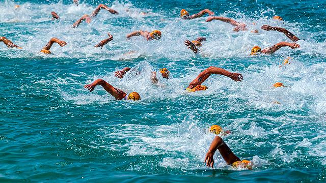 Schwimmen am Triathlon